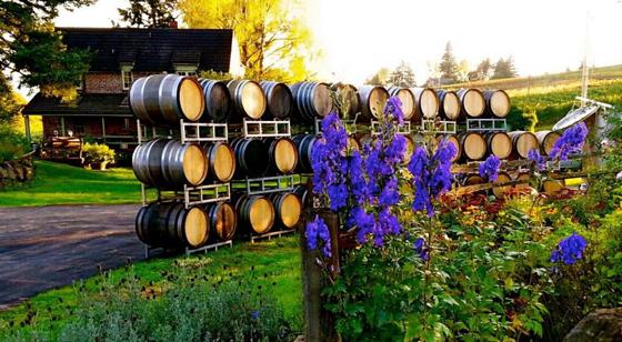 Brick House Vineyards