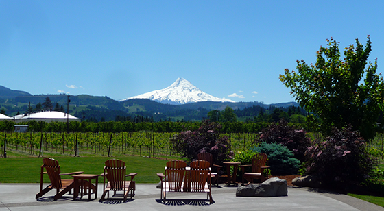 Mt. Hood Winery
